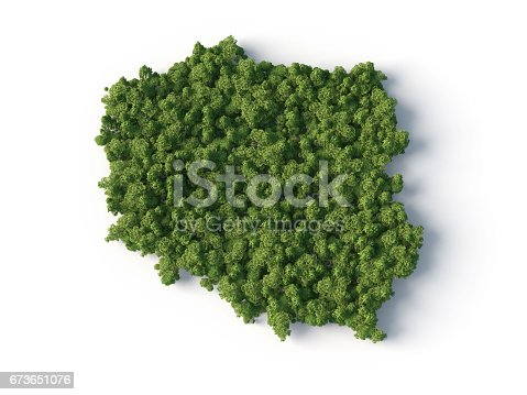 istock forest on the Poland map shape 673651076