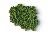 forest on the Poland map shape