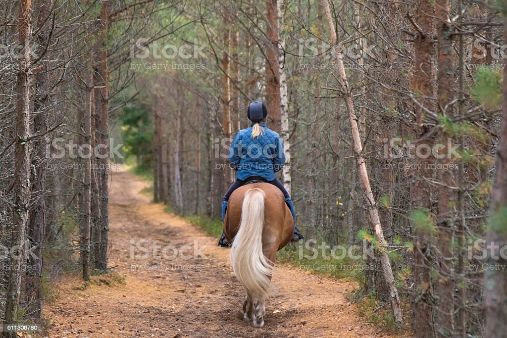 Forest path and rider stock photo