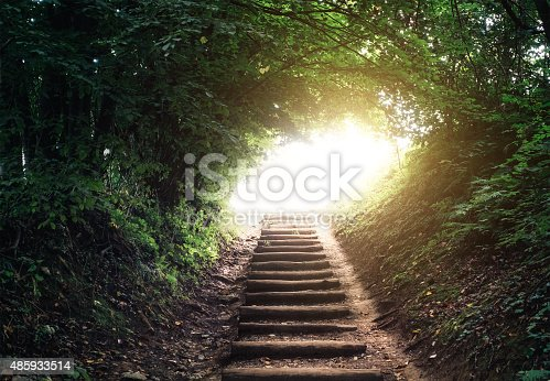 Staircase leading through the forest. Light at the end of the tunnel.