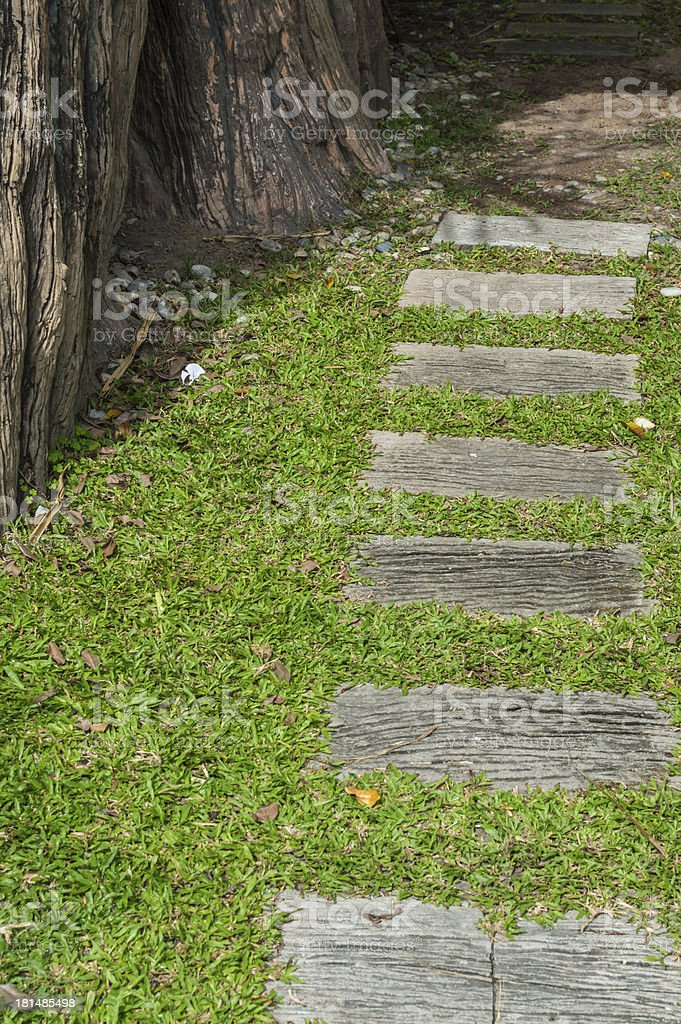 Forest Path Trails in the park. royalty-free stock photo