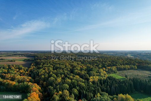 istock Forest photographed with a drone on sunny day. 1344621081