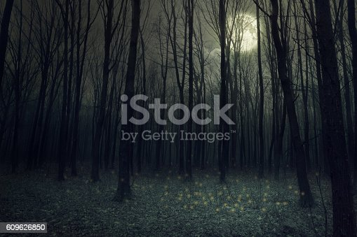 istock forest 609626850