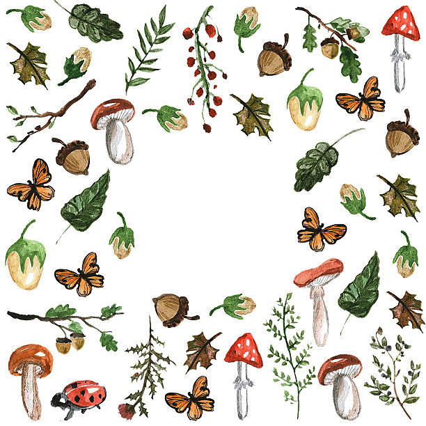 Forest plants, trees, leaves, mushrooms stock photo