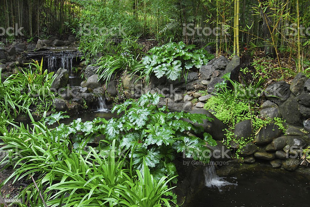 Forest Ponds royalty-free stock photo