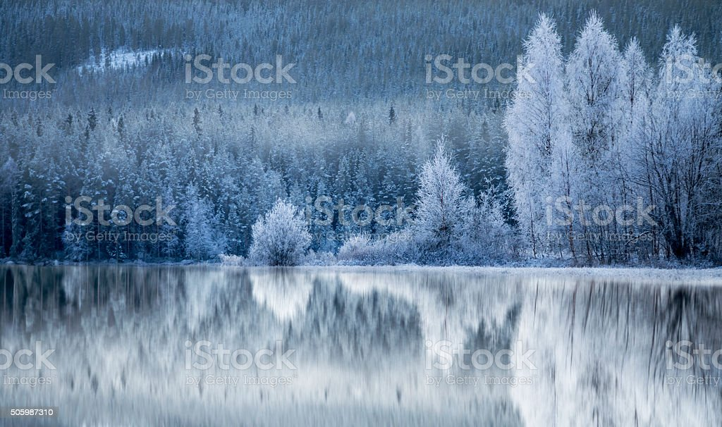 Forest reflected in frozen lake stock photo