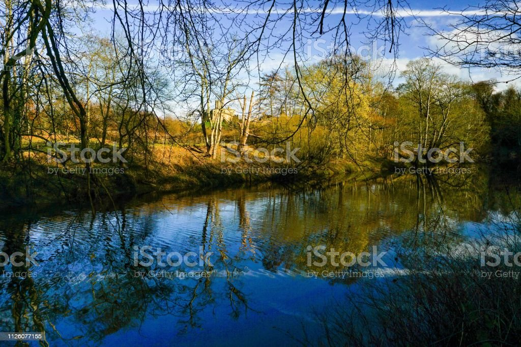 Forest reflection on river stock photo