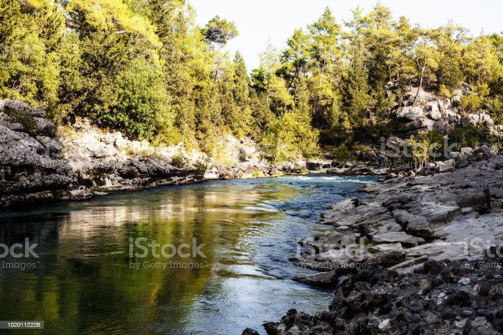 Orman, nehir ve içiniz rahat olsun stok fotoğrafı