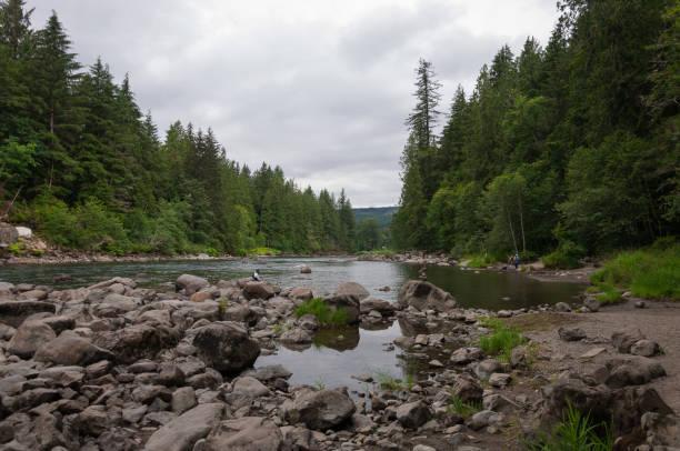 forest river - snoqualmie foto e immagini stock