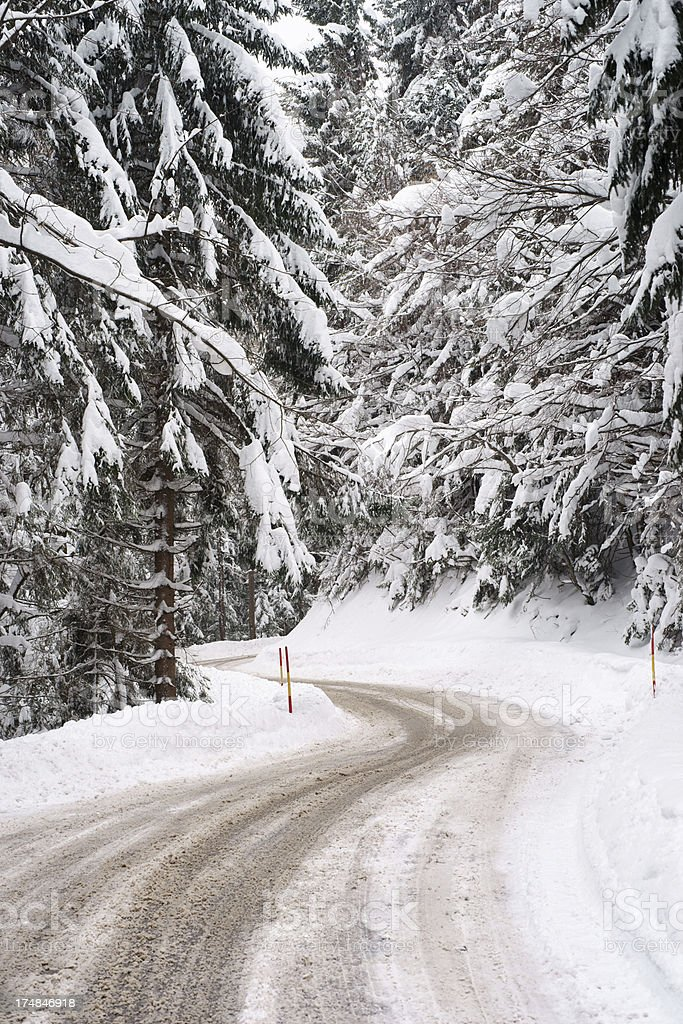 Forest road in winter - vertical royalty-free stock photo