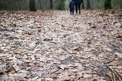 Forest road is littered with dry, brown, last year's leaves, in the background mother and child are walking, holding hands, among trees, on a cloudy spring day.