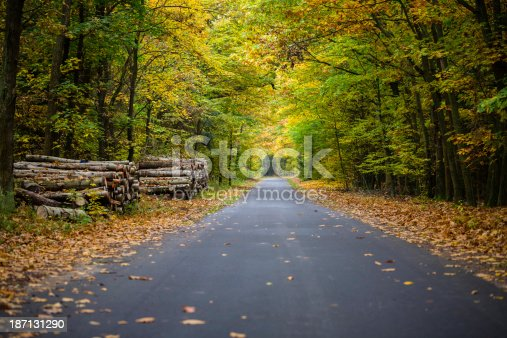 istock forest road 187131290