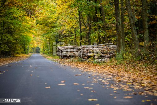 istock forest road 453312709