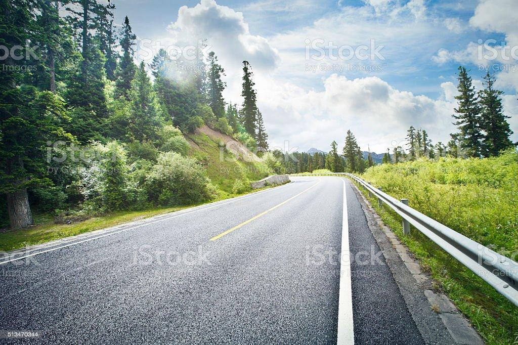 Foto De Forest Road E Mais Fotos De Stock De Arborizado Istock
