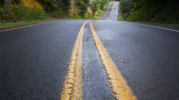 forest road - zweispurige strecke stock-fotos und bilder