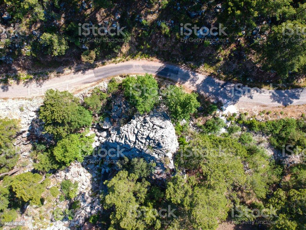 Forest Roads Between Trees Aerial Shot zbiór zdjęć royalty-free