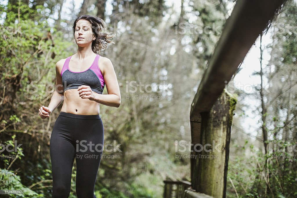 Forest Run royalty-free stock photo