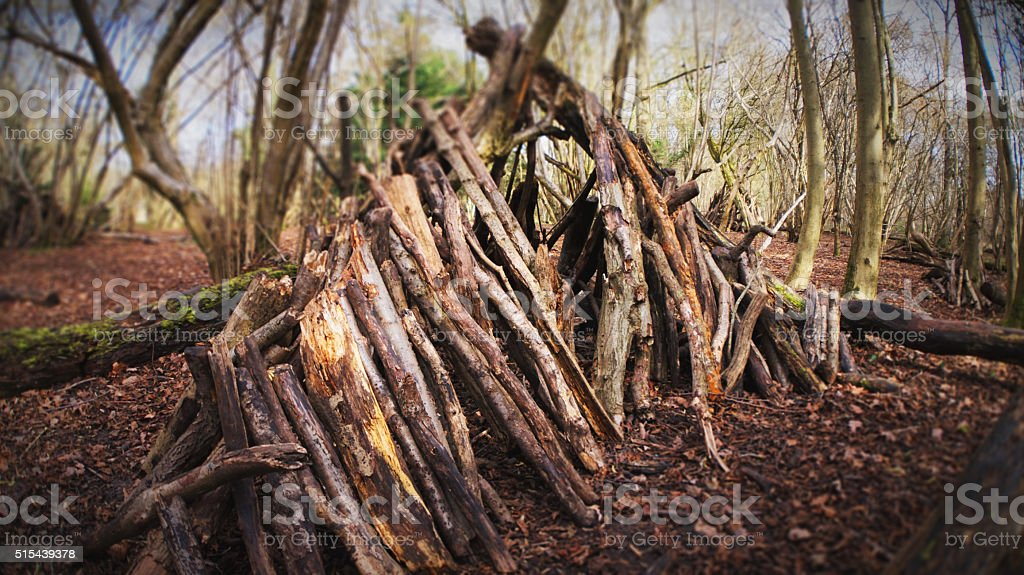 Forest Shelter stock photo