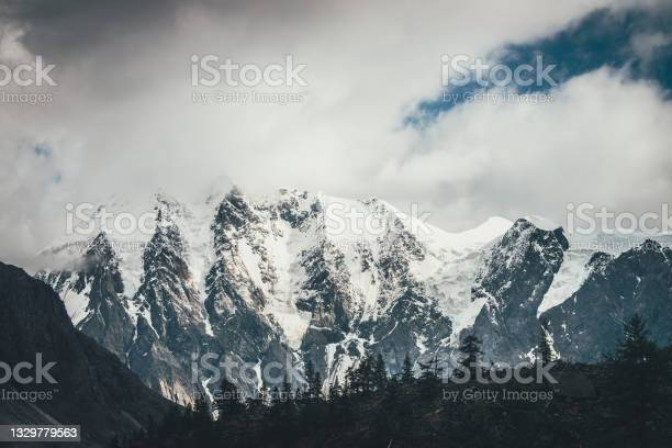 Photo of Forest silhouette on moraines against big glaciers on high mountains in sunlight in low clouds. Coniferous trees silhouettes on moraine on background of great snowy mountains in sunshine in cloudy sky