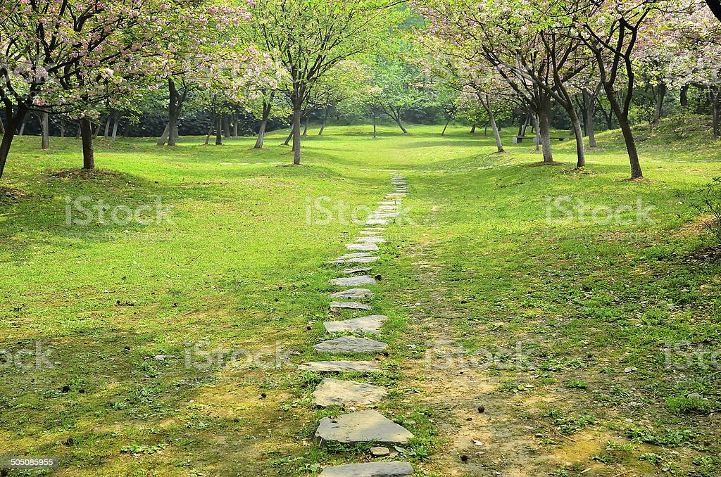 817 Formal Garden Footpath Stepping Stone Garden Path Stock Photos Pictures Royalty Free Images Istock