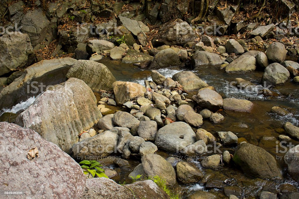 Forest stream among stones, cold water stream in mountains stock photo