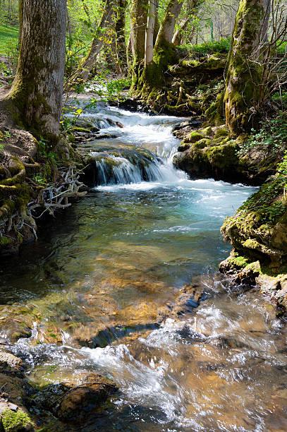 Wald stream mit kleinen cascade im Frühling – Foto