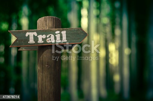 Wooden Trail Sign In A Forest For Hikers