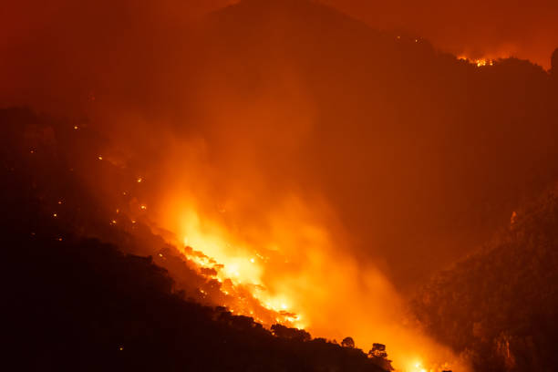 Forest under fire at Loutraki in Greece. stock photo