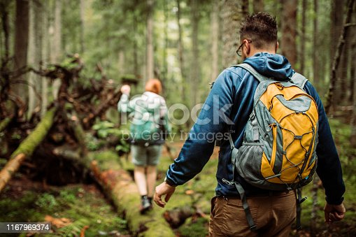 Group of friends hikers in forest, walking and seaking for a good place for camping