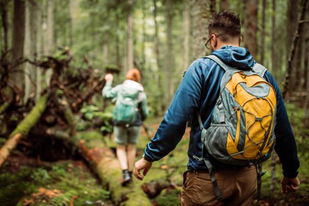 caminata por el bosque y aventuras de camping - excursionismo fotografías e imágenes de stock