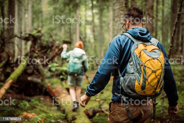 Photo of Forest walk and camping adventures