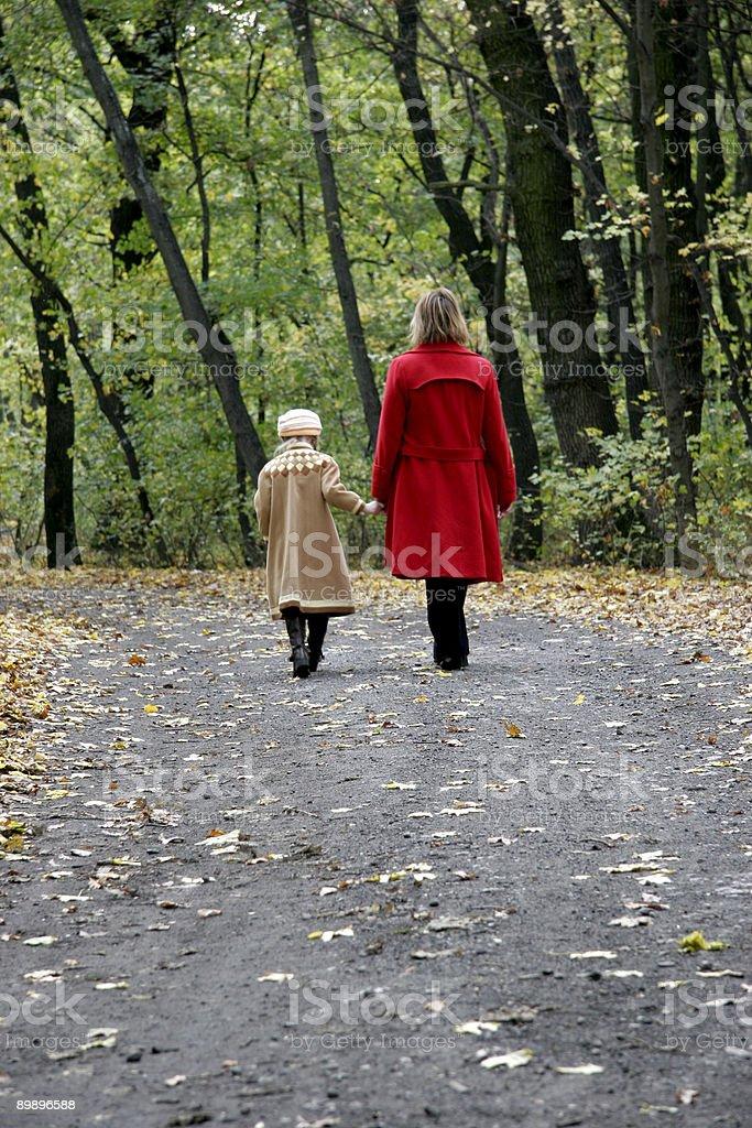 Лесу ходьбы Стоковые фото Стоковая фотография