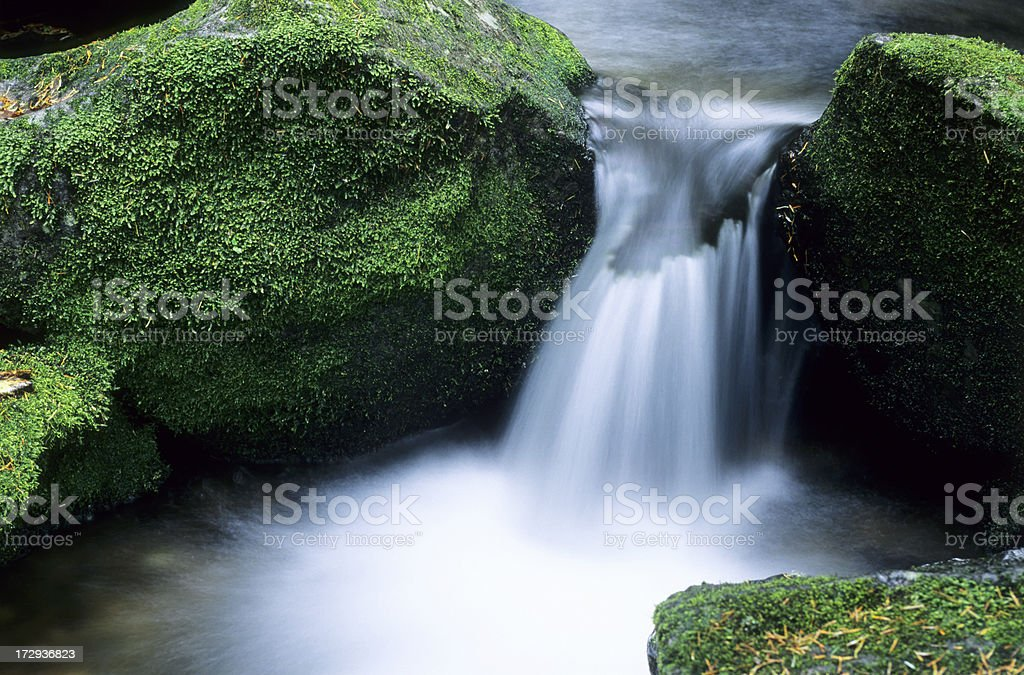 forest water fall royalty-free stock photo