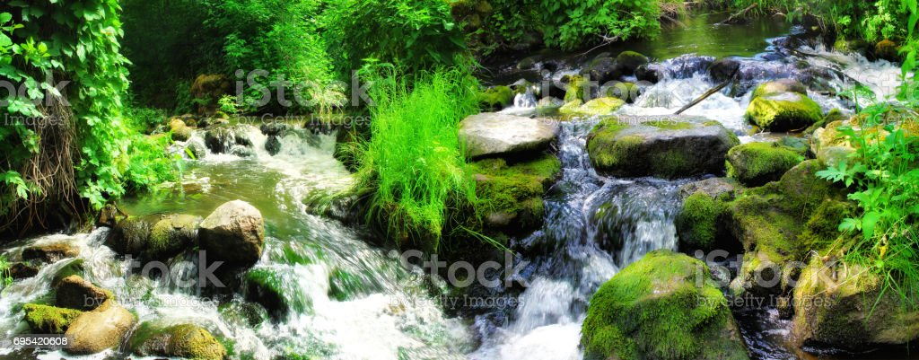 Forest waterfall with wet rocks. Panoramic landscape. stock photo