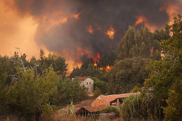 Forest Wild fire near houses on Portugal Summer stock photo