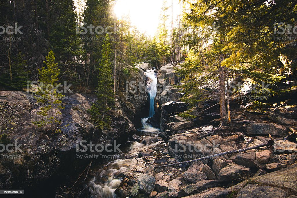 Forest with a waterfall flowing into a stream during sunset. - foto de stock