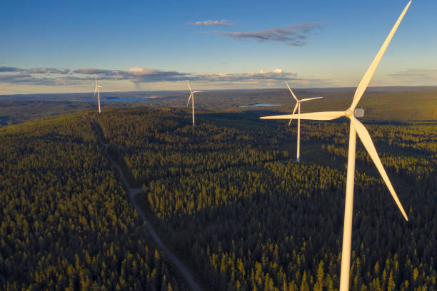 Forest with wind power stations stock photo