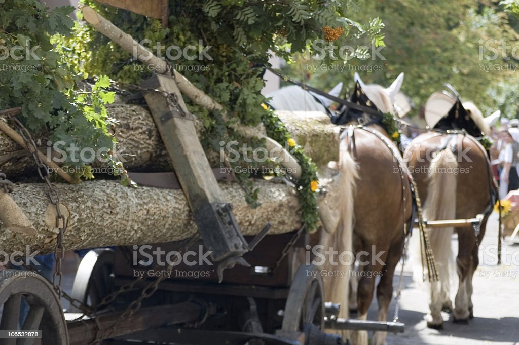 forest work royalty-free stock photo