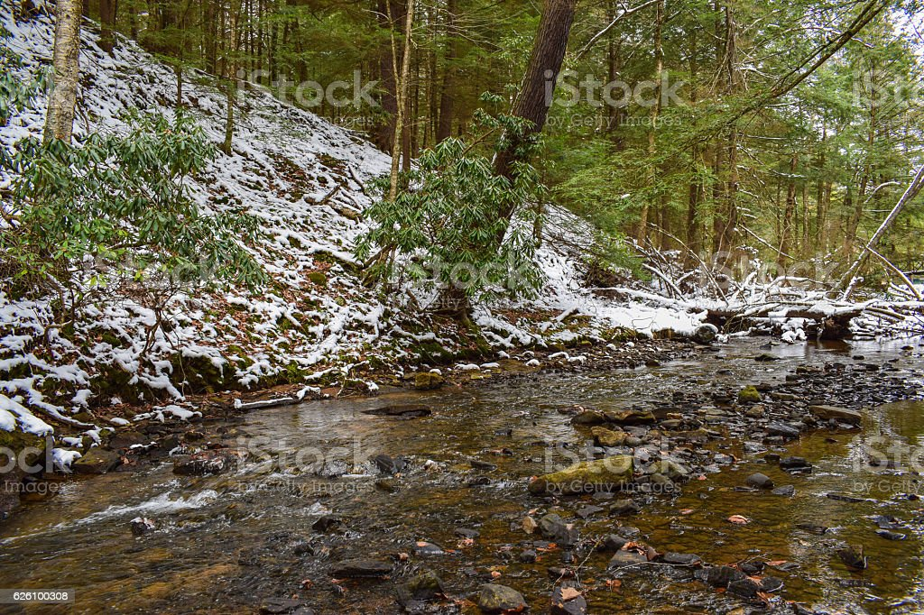Forested Creek in Winter stock photo