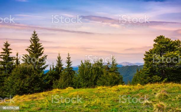 Photo of forested hills over the Brustury valley at dusk