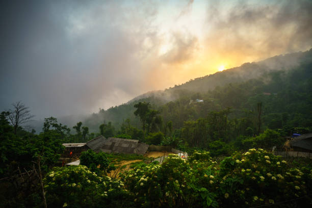 forested mountain in low lying cloud with minority village houses, flower and faded sun - minority stock photos and pictures