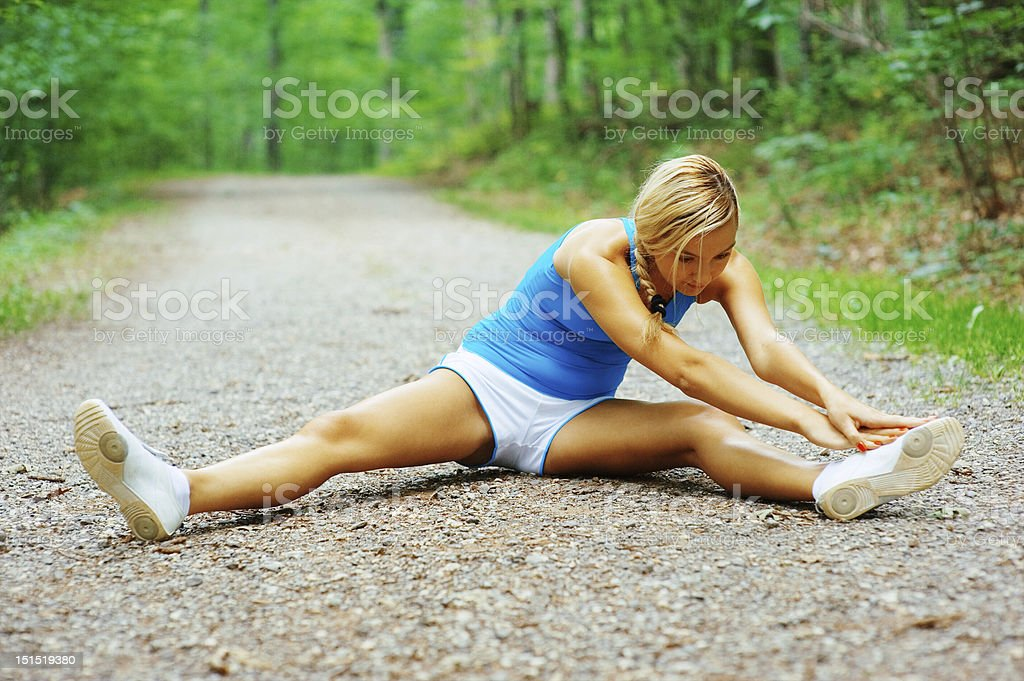Forested Road Runner royalty-free stock photo