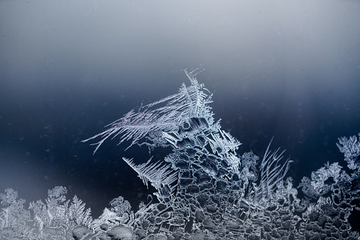 Horizontal photo of forest-like ice pattern with frozen crystals on cold glass