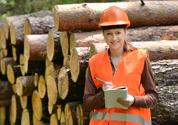 silvicoltura ingegnere - industria forestale foto e immagini stock