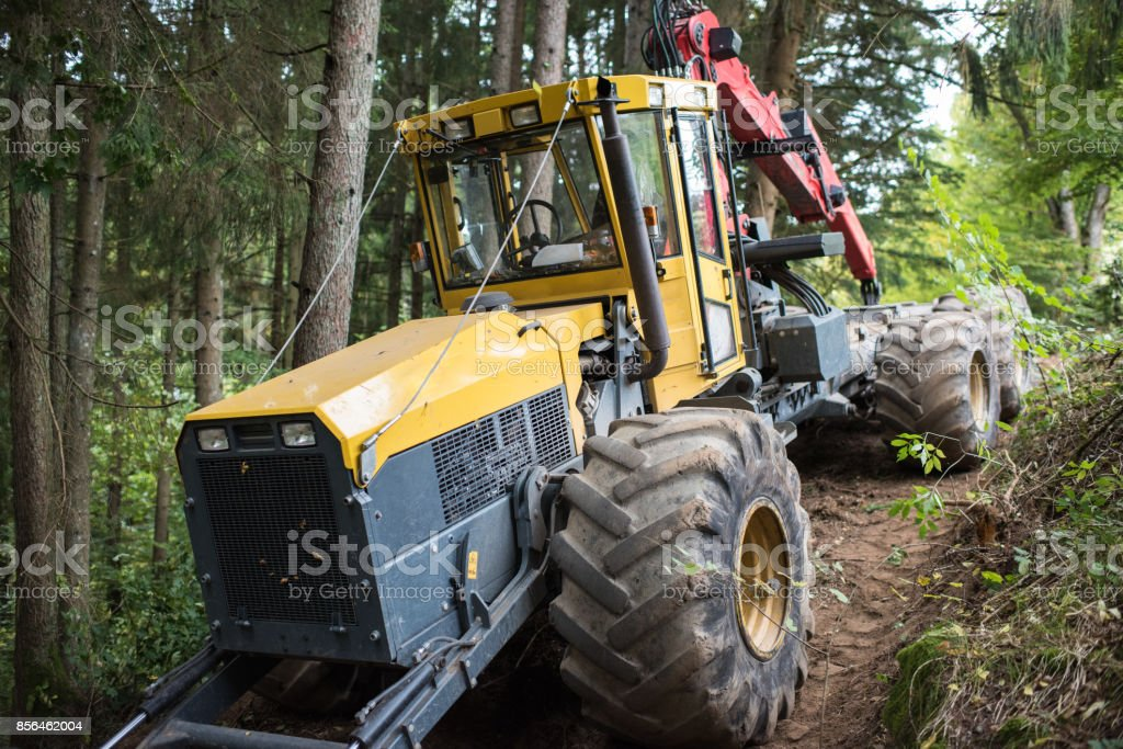 forestry machine stock photo