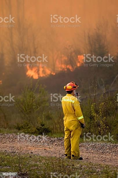 Leśnictwo Urzędnik - zdjęcia stockowe i więcej obrazów Strażak