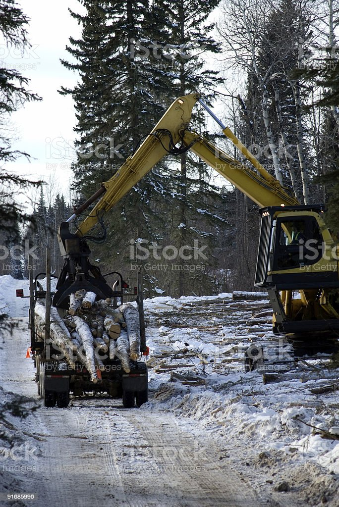Forestry Operations Loading a Logging Truck royalty-free stock photo