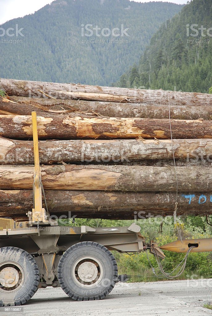 Forestry Truck Loaded with Logs royalty-free stock photo