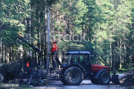 Slovenia, Julian Alps, July 20, 2019; Forestry worker with machinery loading trees on a cart.  They are specially trained worker who prepare trees for a transportation.