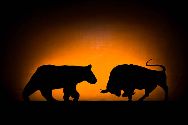 Forex: Bear and bull Common symbols of wall street in silhouette concept bull market stock pictures, royalty-free photos & images